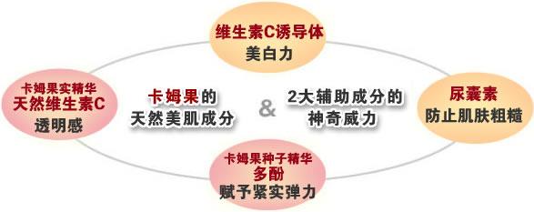 dhc卡姆系列_DHC卡姆活力亮白系列_极致润白3步护理_DHC化妆品中国官网